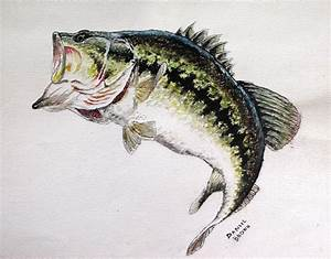 Information About Largemouth Bass Jumping Wallpaper