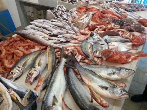 banco pescheria banco pesce fresco picture of pescheria gastronomica