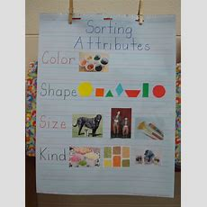 25+ Best Ideas About Kindergarten Sorting Activities On Pinterest  Sorting Kindergarten