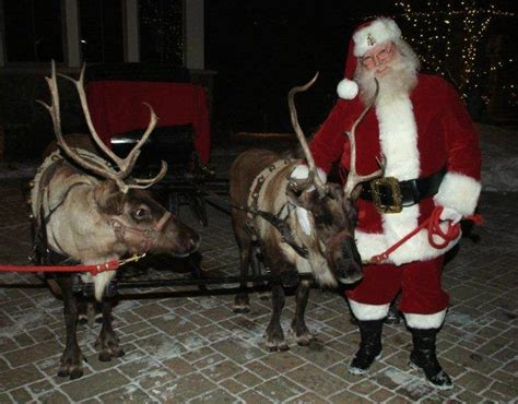 """Search Results for """"All Santa S Reindeers Names"""
