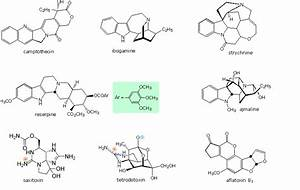 24 9 Heterocyclic Amines