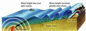 Earthquake and Seismic Waves - Geography Study Material ...