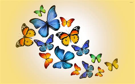 Creative Wallpapers For Iphone Colorful Cluster Butterfly Wallpapers Butterfly