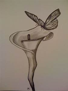 Drawings On Pinterest Pencil Drawings Of Flowers Lilies ...