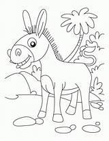 Donkey Coloring Ane Donkeys Dessin Coloriage Printable Ausmalbilder Heureux Animals Animal Sheet Superbe Palm Sunday Farm Esel Magarci Pdf Tiere sketch template