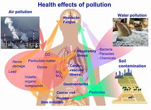 Figure 40.4: Effect of Pollution on human health.