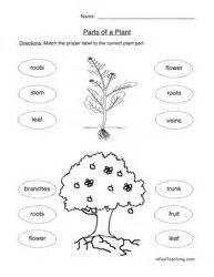 what do plants make worksheet plants science worksheets parts of a plant plant science