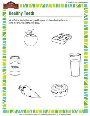 healthy teeth science worksheets for 2nd grade