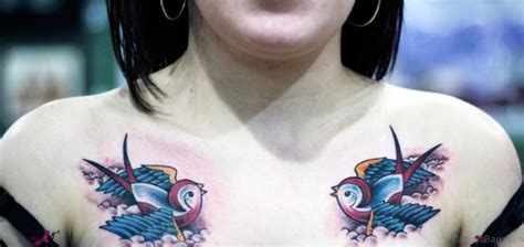 beautiful swallow tattoos  chest