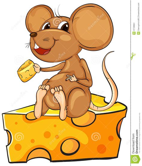 Maus Mit Käse Bilder by A Mouse Sitting Above A Cheese Stock Image Image 37728951