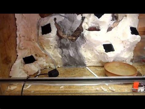 comment cuisiner le jarret de veau quel est le plafond du lep 28 images quel est le