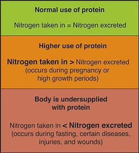 Proteins Dietary Proteins