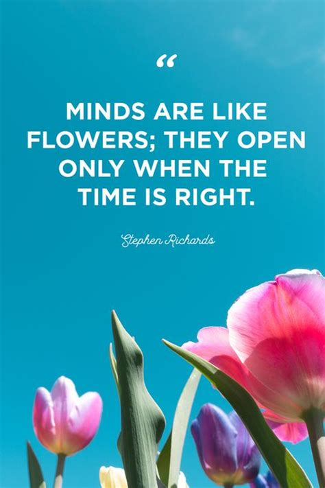 beautiful flower quotes laughtard