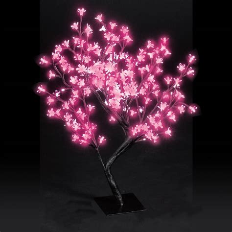 67cm cherry blossom tree with pink led lights next day