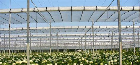 flat roof retractable greenhouse gothic arch greenhouses