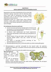 12 Biology Notes Ch02 Sexual Reproduction In Flowering Plants