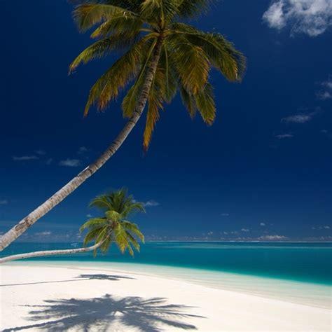 espresso kitchen island conrad maldives rangali island alif dhaal medhu uthuru