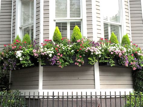 cascading flowers for window boxes jll design window box ideas more garden inspirations