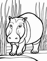 Hippo Coloring Pages Hippopotamus Animals Cartoon Colouring Hippos Cliparts Sheet Animal Printable Clipart Library Colour Safari Fiction Non Popular Giving sketch template