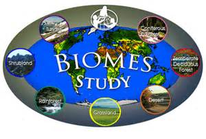 What Are the 5 Biomes