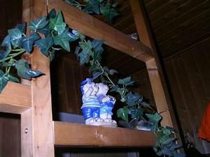 Pflanzen Für Flur : welche pflanzen in dunklen flur pflanzen botanik green24 hilfe pflege bilder ~ Bigdaddyawards.com Haus und Dekorationen