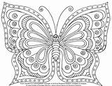 Butterflies sketch template