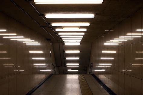 fluorescent l