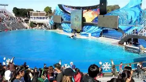 One Ocean Shamu Show Seaworld San Diego Youtube