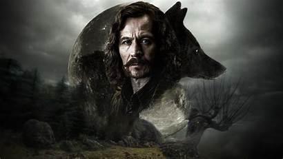 Sirius Wallpapers Bellatrix Potter Harry Lestrange Phoenix