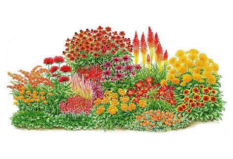 balkonpflanzen winterhart mehrj 228 hrig pflegeleichte pflanzen winterhart balkonpflanzen