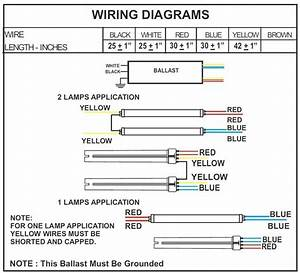 T5 Wiring Diagram from tse3.mm.bing.net