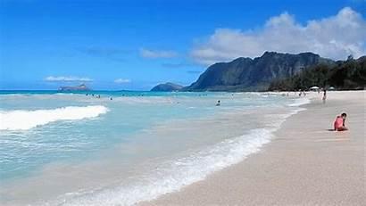 Beach Gifs Christmas Holiday Hawaii Giphy Links