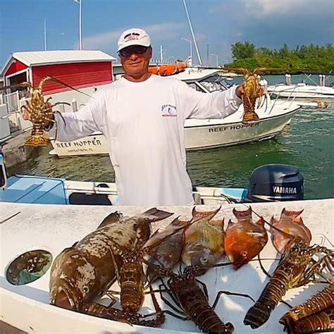 catch grouper lobster fishing marathon fish mangrove fresh snapper florida keys meal delicious whole trips
