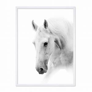 Pferdekopf Schwarz Weiß : poster 39 pferdekopf 39 30x40 cm schwarz weiss motiv pferd ~ Watch28wear.com Haus und Dekorationen