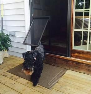 screen door with pet door styles and design to improve With should i get a dog door