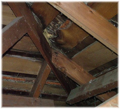 leak in roof leaking roof repairs how to build a house