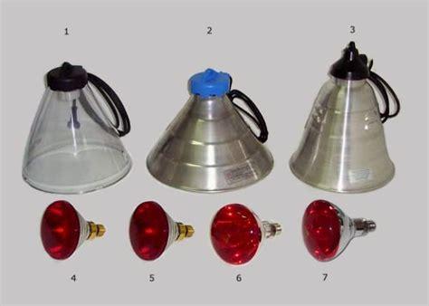 lade a infrarossi per animali g r e c o store riflettori e lade infrarossi