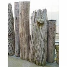 Tronc Bois Flotté : vente de bois flott ~ Dallasstarsshop.com Idées de Décoration