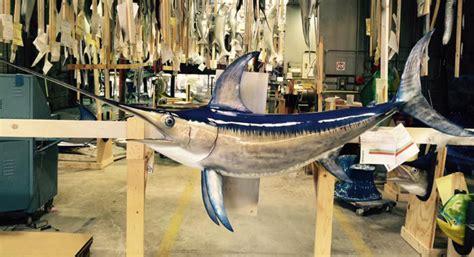 swordfish mount fish custom taxidermy sword mounted trophy driftwood wall bass graytaxidermy being placed