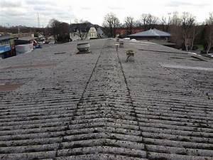 Entsorgung Asbest Kosten : kosten entsorgung asbest wellplatten wellasbest asbestplatten eternit demontage und entsorgung ~ Frokenaadalensverden.com Haus und Dekorationen