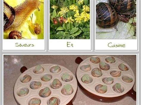 partenariat cuisine les meilleures recettes d 39 escargots et partenariat