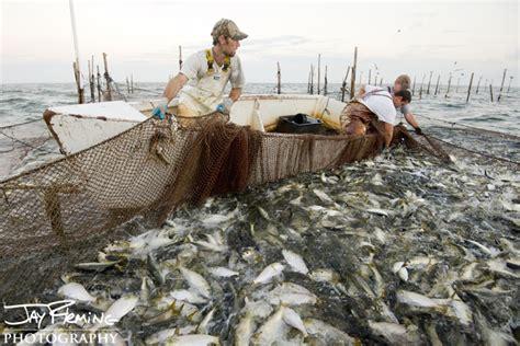 fishing gear  coastal net gears  trappers