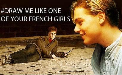 French Draw Potter Harry Meme Leonardo Dicaprio