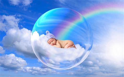 baby seele lebewesen kostenloses foto auf pixabay