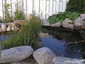 Filtre Bassin Exterieur : construire une cascade d 39 eau filtrante pour bassin de jardin ~ Melissatoandfro.com Idées de Décoration