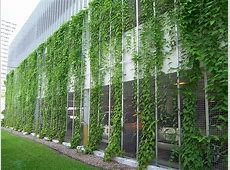 50+ Green wall Design Inspiration The Architects Diary