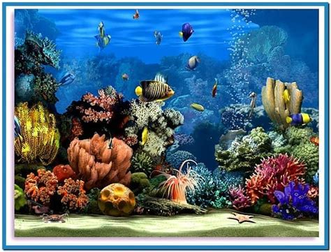 living marine aquarium 2 screensaver free