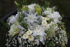Edel Und Weiss Nürnberg : edel und wei edelwei wedding ~ Frokenaadalensverden.com Haus und Dekorationen