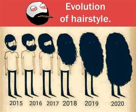 evolution hairstyle memes doplrcom