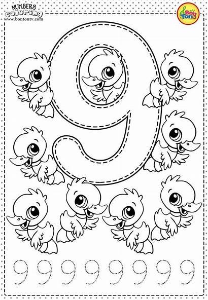 Preschool Number Worksheets Numbers Coloring Pages Printables